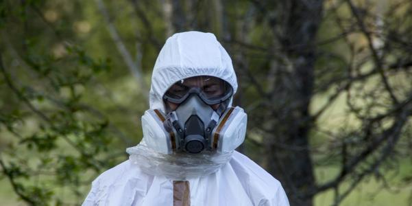 Harmful Effects of Asbestos